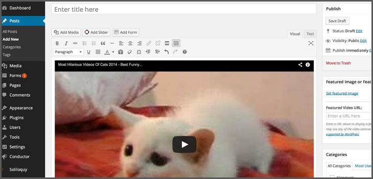 preview-videos-in-wordpress-4-0